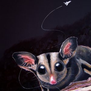 Wild Night sugar glider by Merry Sparks